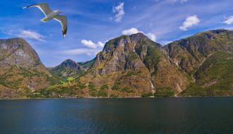 9 Nts Norse Legends Cruise with Amsterdam Stay